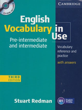 English Vocabulary in Use. Pre-intermediate and intermediate